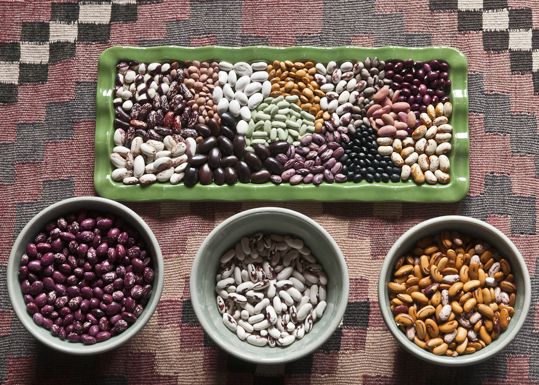 Yes You Can Grow Dried Beans On Lopez Lopez Island Kitchen Gardens