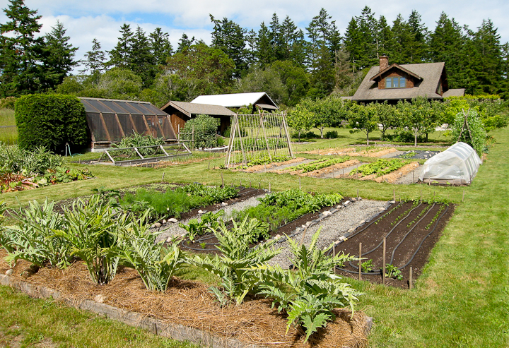 About My Kitchen Garden Lopez Island Kitchen Gardens