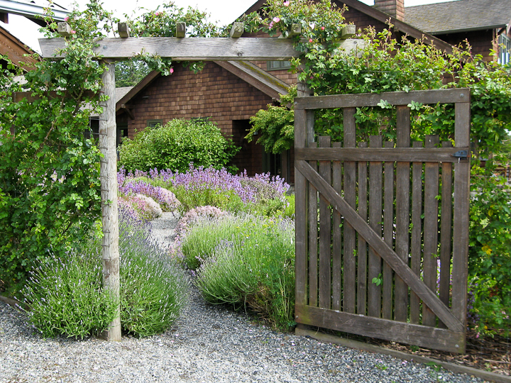 Herbs lopez island kitchen gardens for Garden door designs