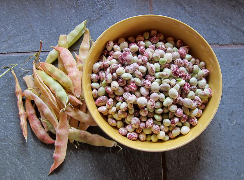 Beans Good Ma S