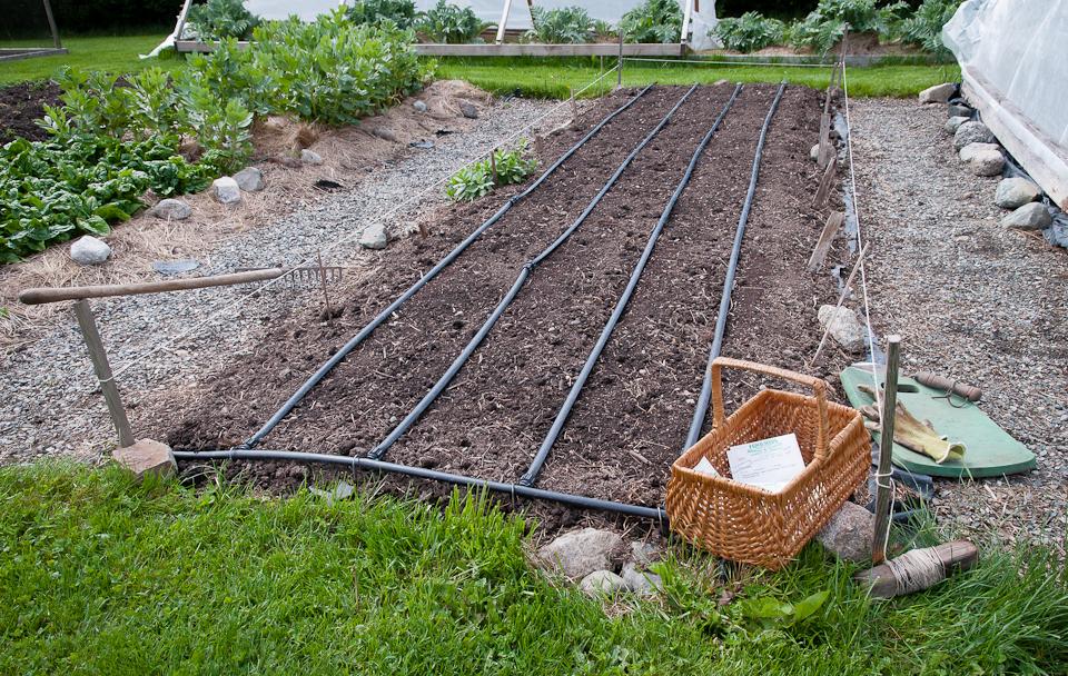 Garden Irrigation Systems Design markcastroco