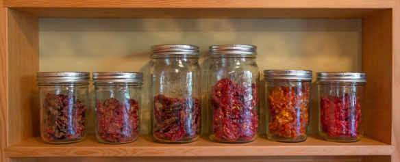 Tomatoes dried in jars
