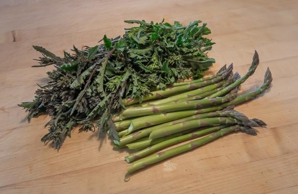 Asparagus kale top still life