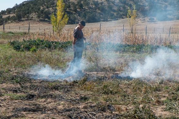 HBG pepper torching