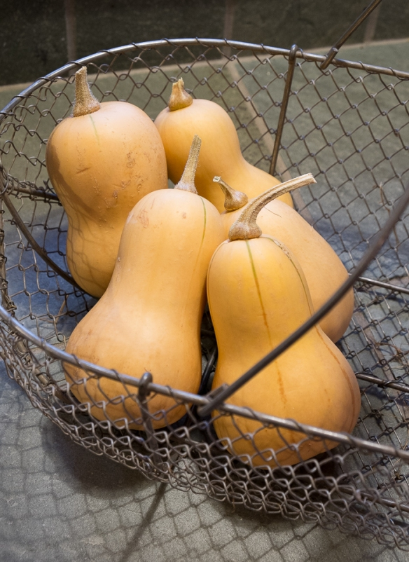 Butternut squash in basket