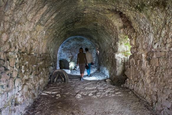 Stefano's vault
