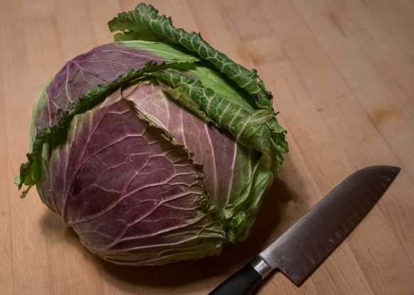 Cabbage JK on counter