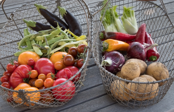 Vegetables in baskets