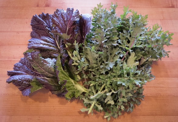 Spring mustard, kale 4.18