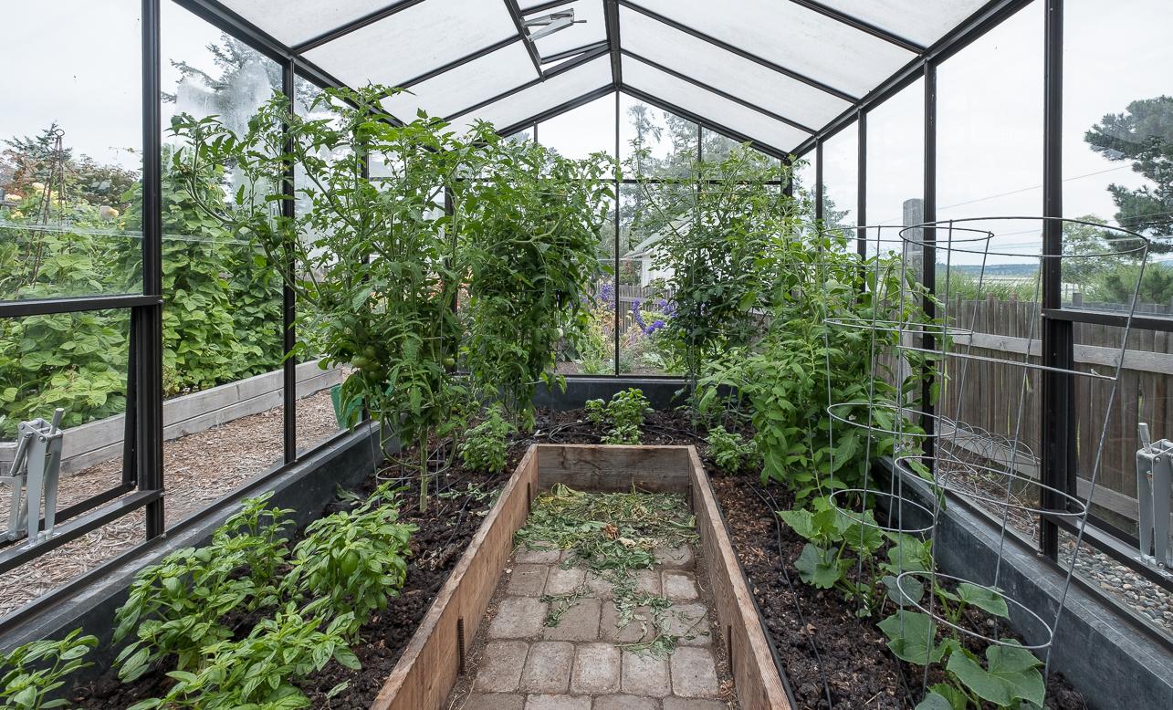 McCabe greenhouse