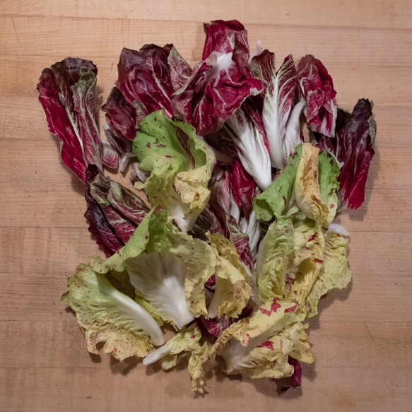 Chicories:Radicchios 1.2020